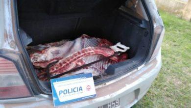 Photo of VIolación de cuarentena y faena clandestina