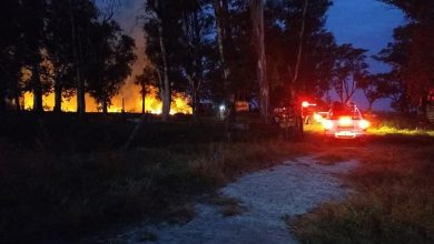 Photo of Salida por incendio en campo de Depetris, sobre Ruta Provincial N°12.