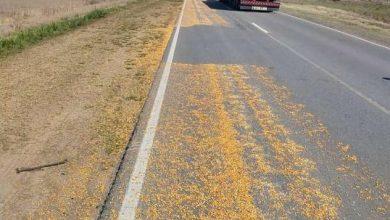 Photo of Derrame de cereal en el kilómetro 434